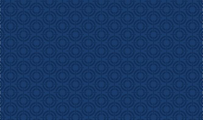 WEB SS Dark Blue Target Pattern2 RGB